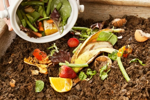 resto de alimentos para adubo orgânico