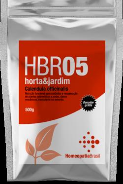 HBR 05 Horta&Jardim - Calendula officinalis