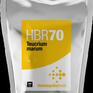 HBR 70 Agro – Teucrium marum – 1Kg