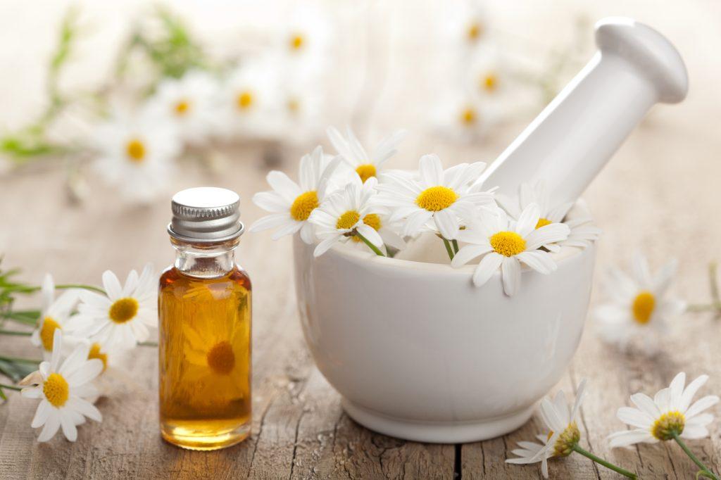 floral de bach feito com plantas terapia
