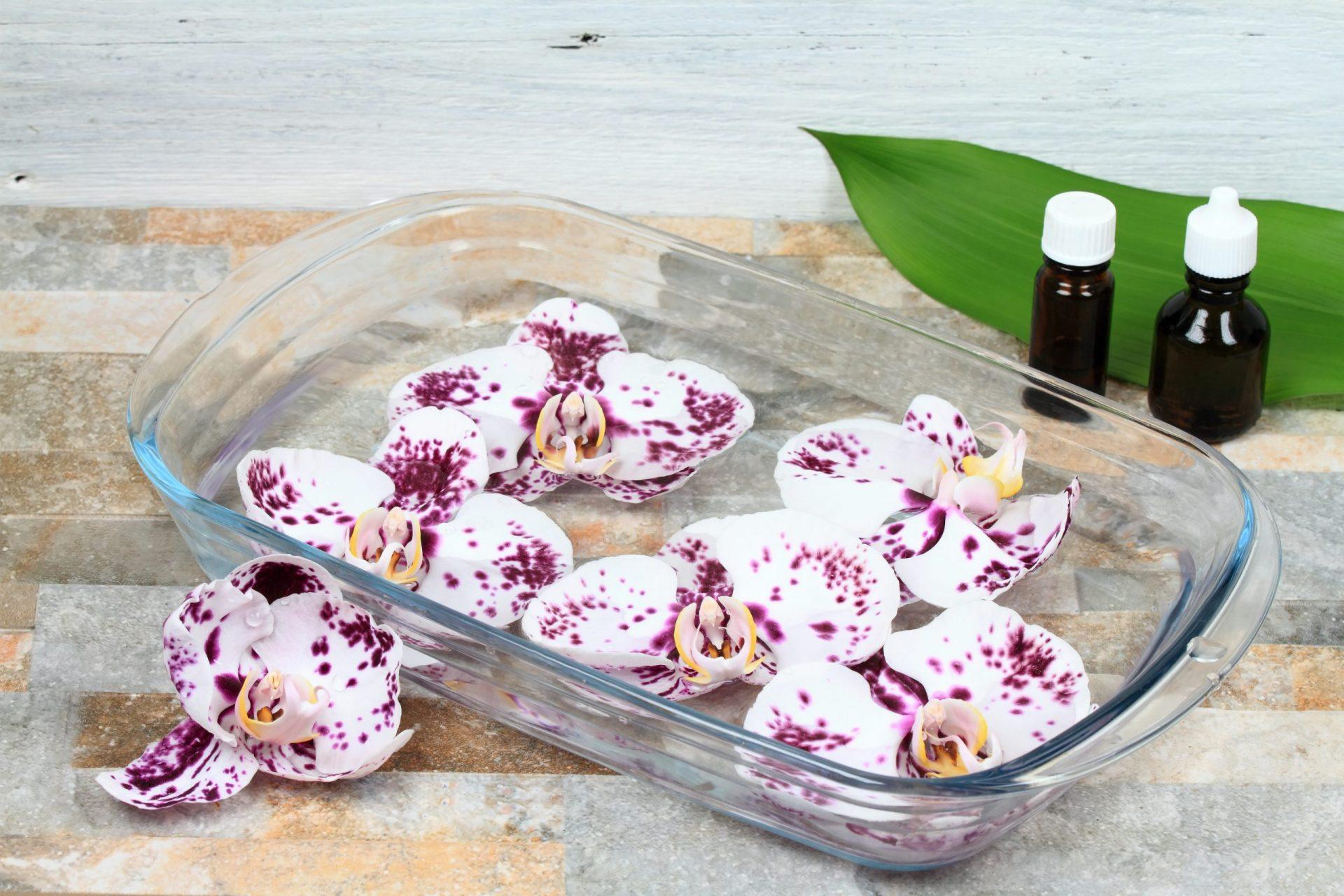 Homeopatia para parar de fumar: Florais, o tratamento que vem das flores