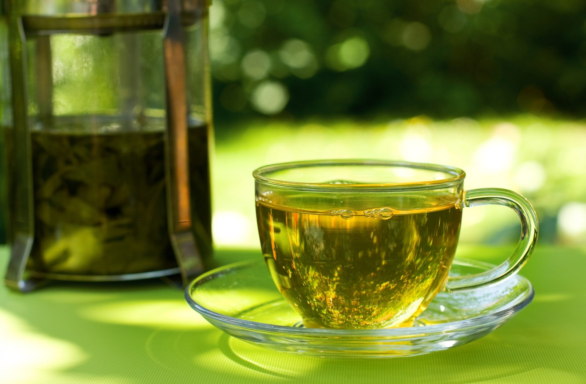 Remédio para emagrecer natural: Chá verde