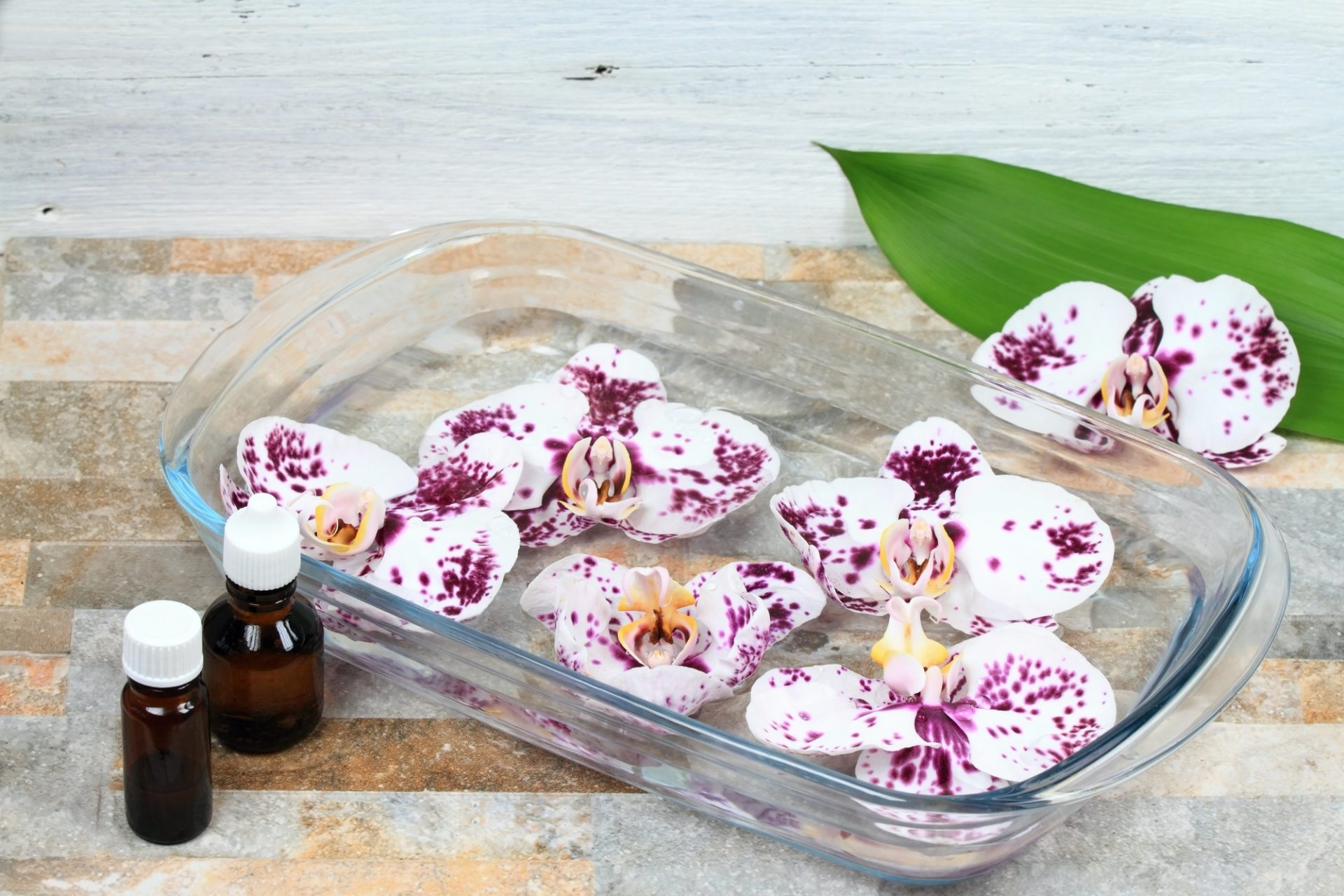 Florais de Bach e a farmácia de homeopatia