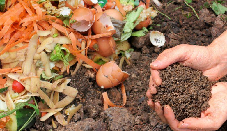 Como fazer o adubo orgânico para horta caseiro com resto de alimentos